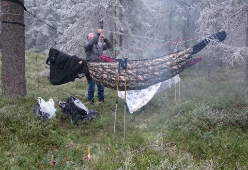 Desemberdingling i nordmarka